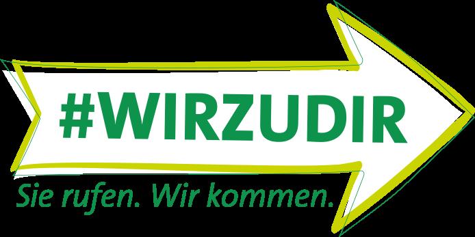 Logo: WIRZUDIR